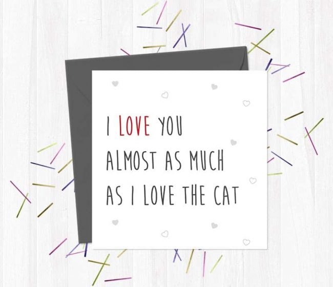 I Love You Almost As Much As I Love The Cat – Valentine's Day Card