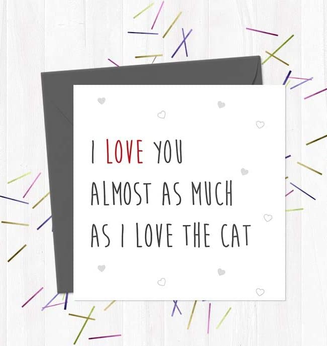 I Love You Almost As Much As I Love The Cat - Valentine's Day Card
