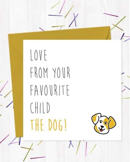 Love From Your Favourite Child…. The Dog!