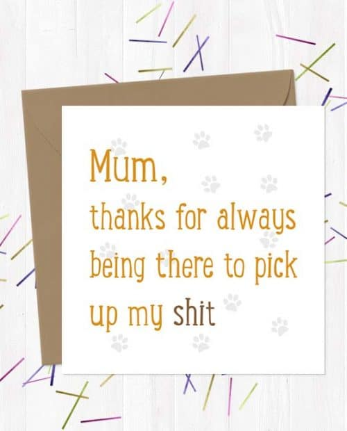 Mum, thanks for picking up all my shit - Mother's Day Card
